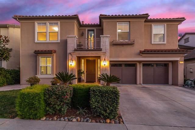 3572 Corsica Court, San Jose, CA 95148 (#ML81827198) :: Excel Fine Homes