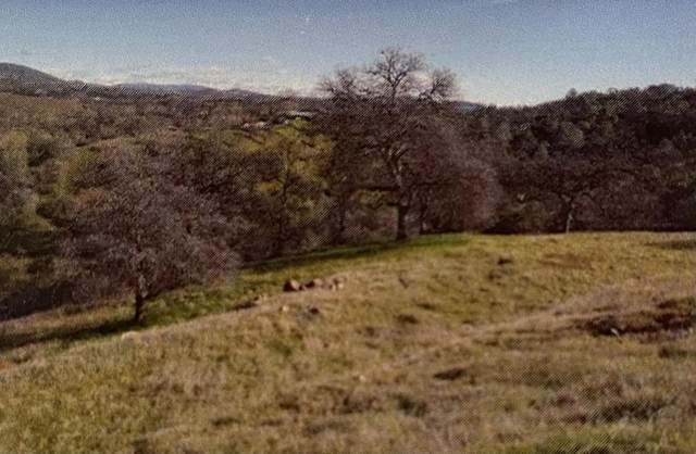 000 Enramada Drive, La Grange, CA 95329 (#ML81827228) :: The Venema Homes Team