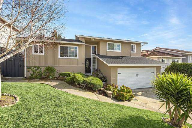 309 Monte Carlo Avenue, Union City, CA 94587 (#ML81830841) :: RE/MAX Accord (DRE# 01491373)