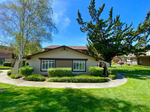 1931 Messina Drive, San Jose, CA 95132 (#ML81838325) :: Realty World Property Network