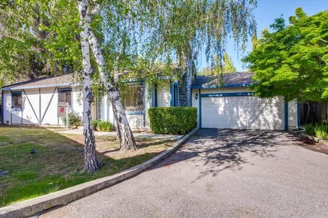 7242 Sharon Drive, San Jose, CA 95129 (#ML81838551) :: Excel Fine Homes