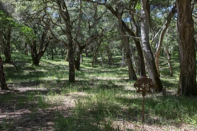 9 Garzas Trail, Carmel, CA 93923 (#ML81842369) :: Blue Line Property Group