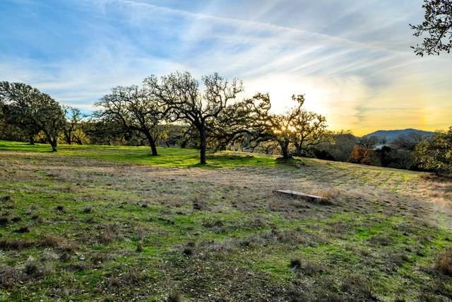 14 Vasquez Trail, Carmel, CA 93923 (#ML81842370) :: Blue Line Property Group