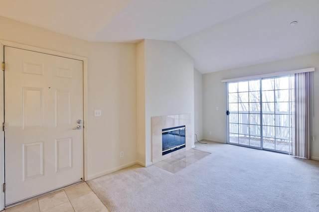 611 Arcadia Terrace #303, Sunnyvale, CA 94085 (#ML81842842) :: The Grubb Company