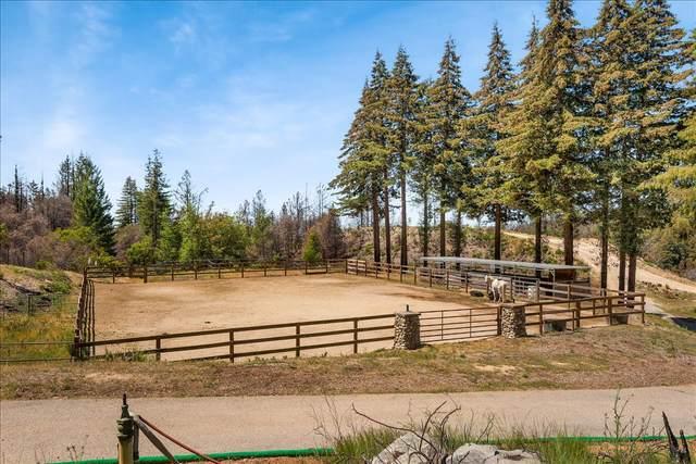 5187 Empire Grade, Santa Cruz, CA 95060 (#ML81841027) :: Swanson Real Estate Team | Keller Williams Tri-Valley Realty