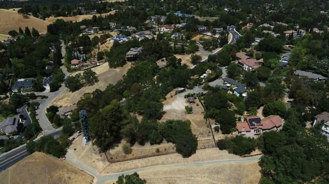 1271 Laverock Lane, Alamo, CA 94507 (#ML81846657) :: Realty World Property Network
