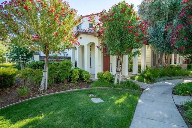 11 W Belleza Lane, Mountain House, CA 95391 (#ML81849642) :: Realty World Property Network