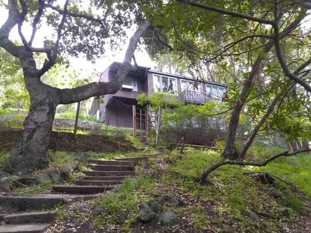 3765 Laurel Way, Redwood City, CA 94062 (#ML81850062) :: Realty World Property Network
