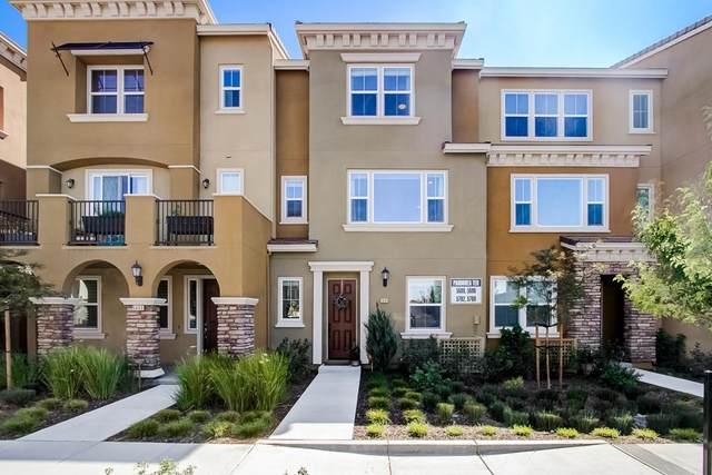 5696 Pandorea Terrace, Newark, CA 94560 (#ML81854590) :: Swanson Real Estate Team | Keller Williams Tri-Valley Realty