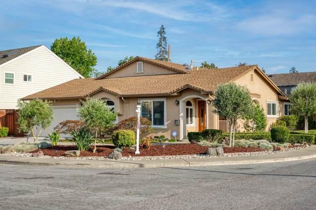 1790 Mount Vernon Drive, San Jose, CA 95125 (#ML81856098) :: Armario Homes Real Estate Team