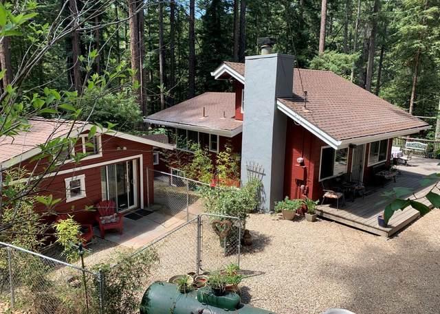 1420 Lakeside Drive, Felton, CA 95018 (#ML81856321) :: Swanson Real Estate Team | Keller Williams Tri-Valley Realty
