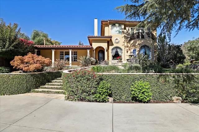 4130 Holly Drive, San Jose, CA 95127 (#ML81857032) :: Armario Homes Real Estate Team