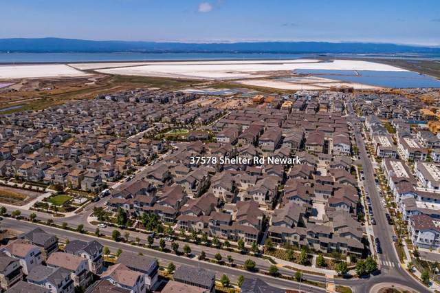 37578 Shelter Road #84, Newark, CA 94560 (#ML81857038) :: Armario Homes Real Estate Team