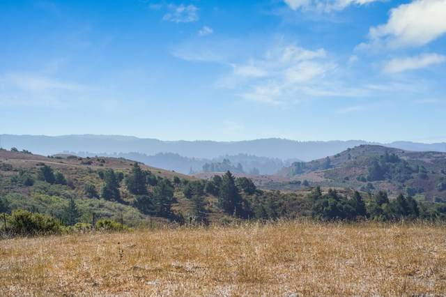 3155 Bear Gulch Road, Woodside, CA 94062 (#ML81861195) :: Swanson Real Estate Team | Keller Williams Tri-Valley Realty