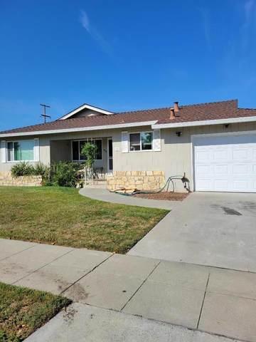 953 Desert Isle Drive, San Jose, CA 95117 (#ML81861228) :: The Venema Homes Team