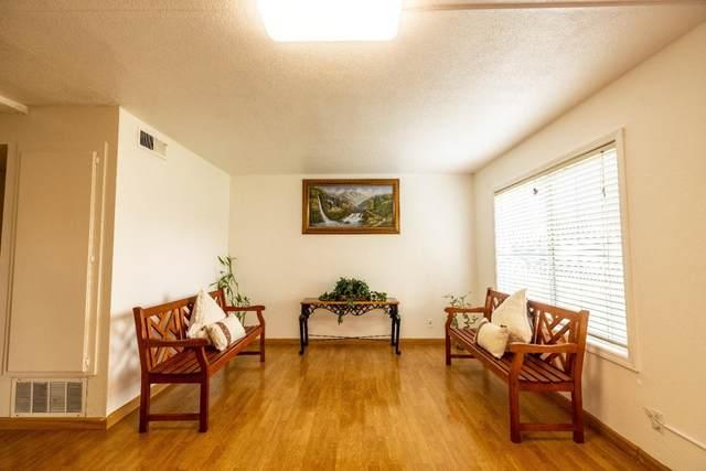 2256 Amberwood Lane, San Jose, CA 95132 (#ML81864229) :: Swanson Real Estate Team | Keller Williams Tri-Valley Realty