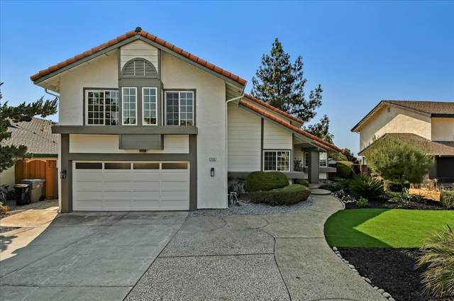 2889 Sweetleaf Court, San Jose, CA 95148 (#ML81864313) :: Realty World Property Network