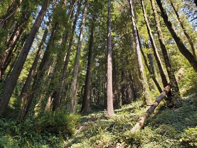 000 Purissima, Woodside, CA 94062 (#ML81864408) :: Blue Line Property Group