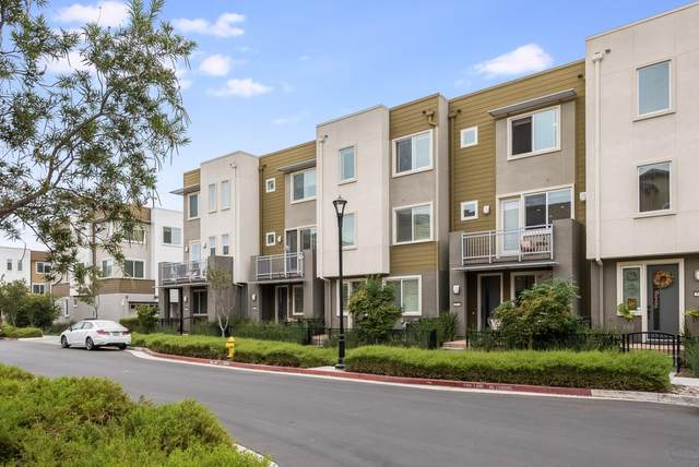 5973 Golden Vista Drive, San Jose, CA 95123 (#ML81866060) :: RE/MAX Accord (DRE# 01491373)