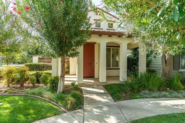 11 W Belleza Lane, Mountain House, CA 95391 (#ML81866160) :: RE/MAX Accord (DRE# 01491373)