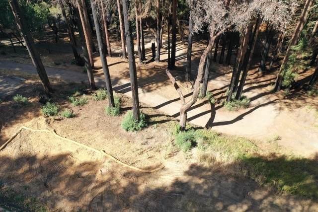 450 Memory Lane, Boulder Creek, CA 95006 (MLS #ML81866406) :: 3 Step Realty Group