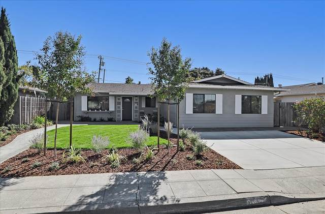 1684 Edsel Drive, Milpitas, CA 95035 (#ML81867194) :: Swanson Real Estate Team   Keller Williams Tri-Valley Realty