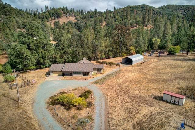 2134 Riverview Road, Wilseyville, CA 95257 (#ML81867271) :: Swanson Real Estate Team   Keller Williams Tri-Valley Realty