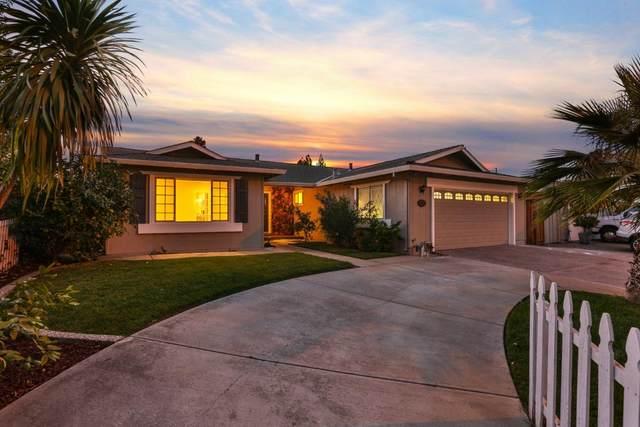 6111 Springer Way, San Jose, CA 95123 (#ML81867296) :: Swanson Real Estate Team   Keller Williams Tri-Valley Realty