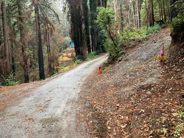 495 Band Road, Boulder Creek, CA 95006 (MLS #ML81867294) :: 3 Step Realty Group