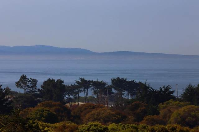 610 Sea View Terrace, WATSONVILLE, CA 95076 (MLS #ML81867576) :: Jimmy Castro Real Estate Group