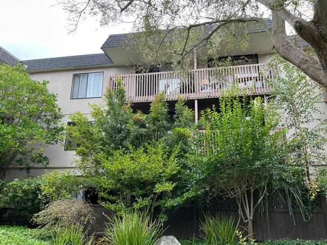 3248 Shelter Creek Lane, San Bruno, CA 94066 (#ML81868097) :: The Lucas Group