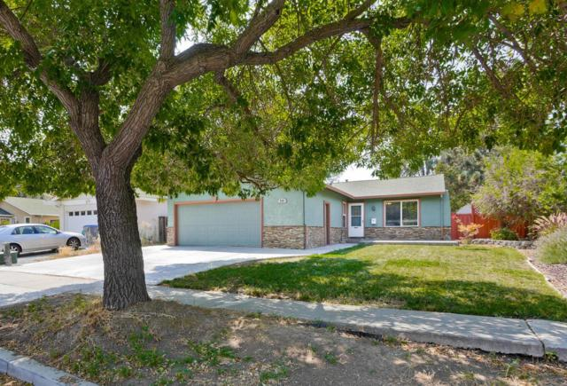 259 Vineyard Drive, San Jose, CA 95119 (#ML81673103) :: Max Devries