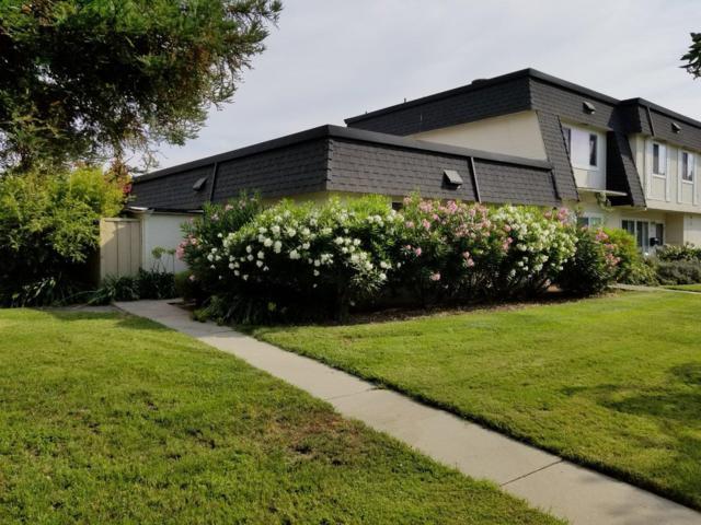 402 Velasco Drive, San Jose, CA 95123 (#ML81674928) :: Max Devries