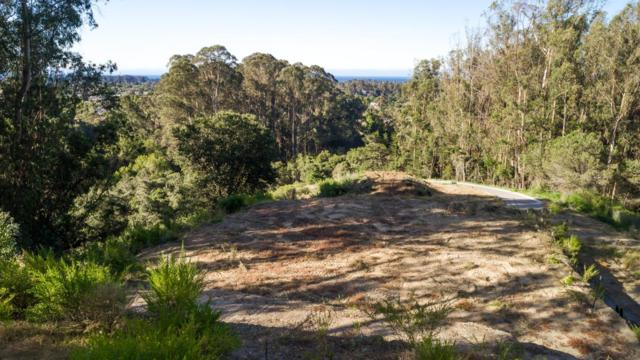 0 Lupine Lane, Santa Cruz, CA 95065 (#ML81689061) :: The Lucas Group