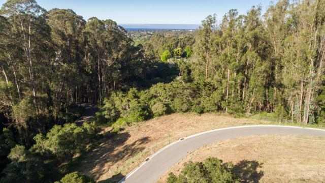 0 Lupine Lane, Santa Cruz, CA 95065 (#ML81689063) :: The Lucas Group