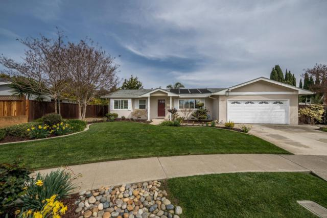 36372 Shorehaven Place, Newark, CA 94560 (#ML81693104) :: Armario Venema Homes Real Estate Team