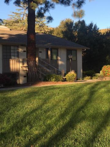 5225 Cribari Dale, San Jose, CA 95135 (#ML81693748) :: The Brendan Moran Team