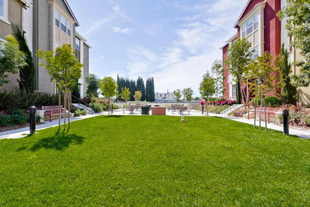 1588 Mccandless Drive, Milpitas, CA 95035 (#ML81697798) :: Realty World Property Network