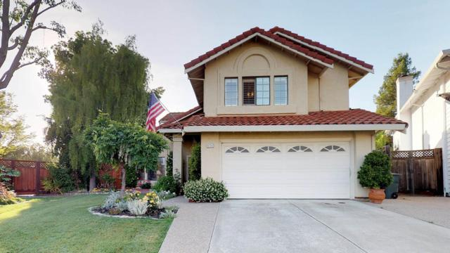6724 Corte Del Vista, Pleasanton, CA 94566 (#ML81705209) :: Realty World Property Network