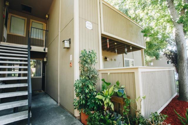 37276 Spruce Terrace, Fremont, CA 94536 (#ML81710050) :: The Grubb Company