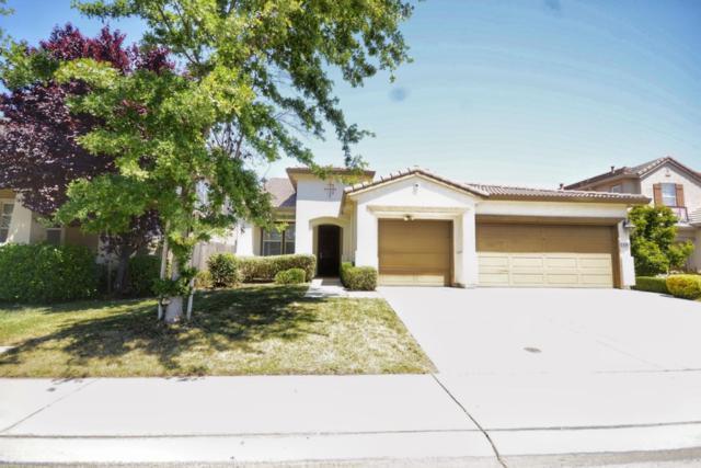 6209 Gus Way, Elk Grove, CA 95757 (#ML81715396) :: Armario Venema Homes Real Estate Team