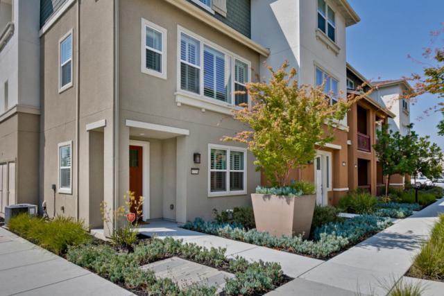 37774 Taro Terrace, Newark, CA 94560 (#ML81717261) :: Armario Venema Homes Real Estate Team