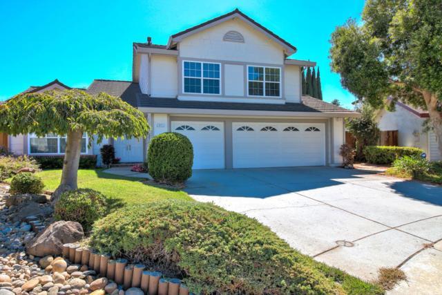 822 Point Creek Court, San Jose, CA 95133 (#ML81725123) :: Armario Venema Homes Real Estate Team
