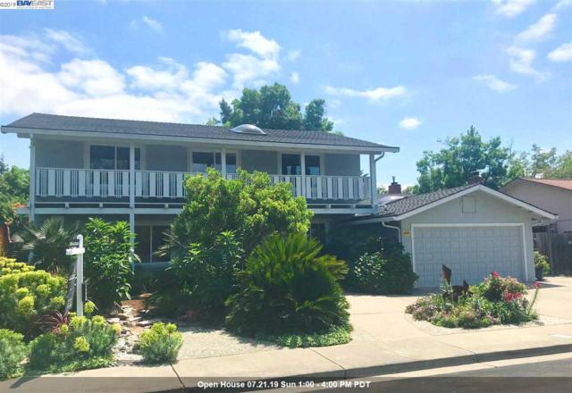 1915 Foxswallow Cir, Pleasanton, CA 94566 (#40863890) :: Armario Venema Homes Real Estate Team