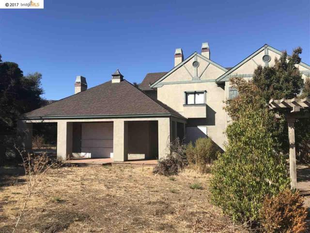 1100 Russelmann Park Rd, Clayton, CA 94517 (#40772046) :: J. Rockcliff Realtors