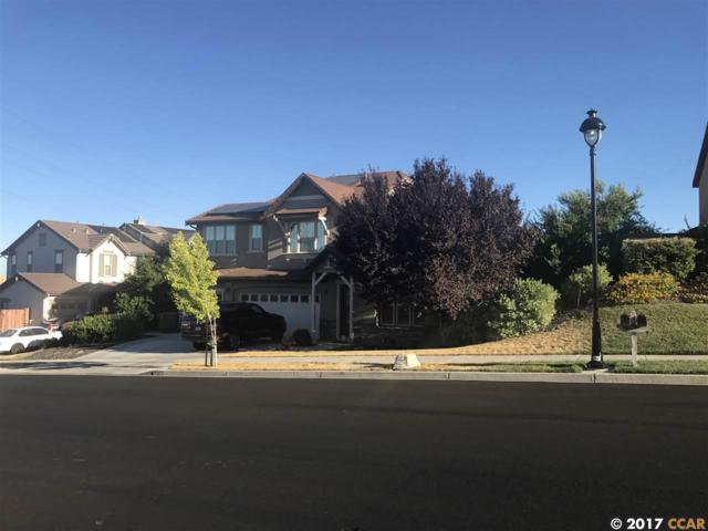 2894 Spanish Bay Dr, Brentwood, CA 94513 (#40793730) :: Estates by Wendy Team