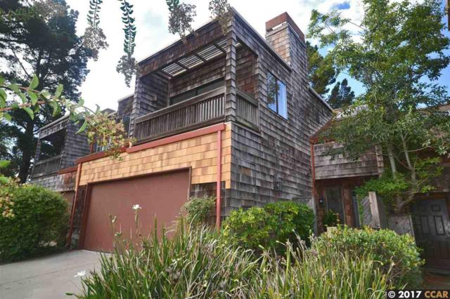 576 Monarch Ridge Dr, Walnut Creek, CA 94597 (#40797956) :: Realty World Property Network