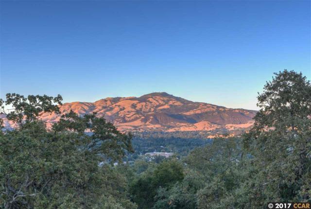 166 Montair Dr, Danville, CA 94526 (#40799805) :: Armario Venema Homes Real Estate Team