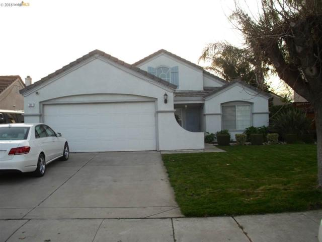 793 Winter Lane, Tracy, CA 95376 (#40808780) :: Armario Venema Homes Real Estate Team