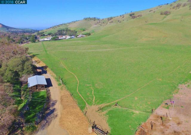 8925 Marsh Creek Rd, Clayton, CA 94517 (#40809685) :: Armario Venema Homes Real Estate Team